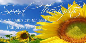 thought seed